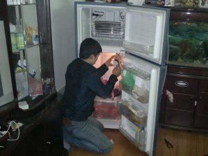 Sửa tủ lạnh tại Dĩ An Bình Dương tại nhà